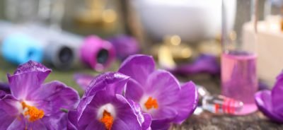 Saffron Appetite Suppressants Benefits